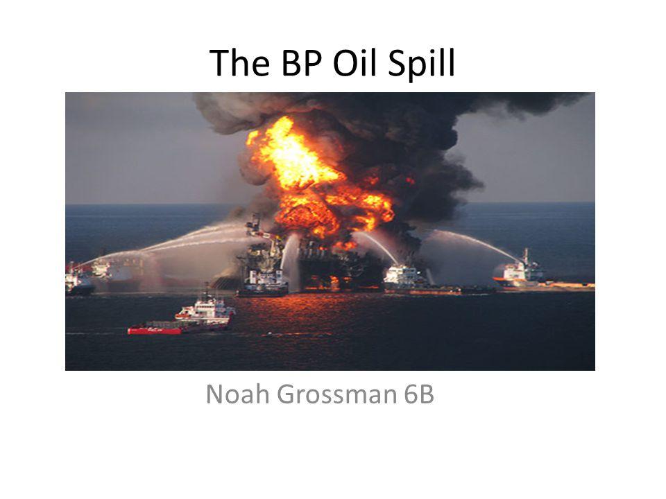 The BP Oil Spill Noah Grossman 6B