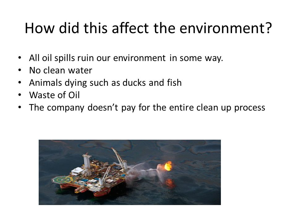 How did this affect the environment? All oil spills ruin our environment in some way. No clean water Animals dying such as ducks and fish Waste of Oil