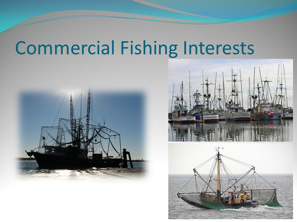 Commercial Fishing Interests