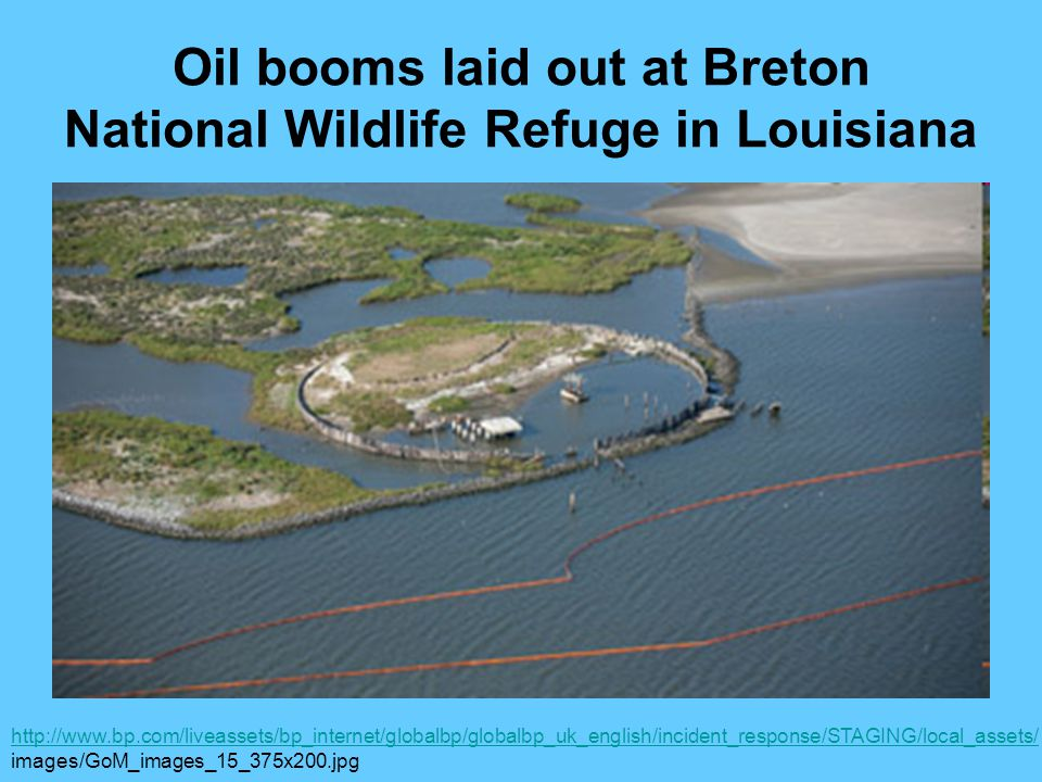Oil booms laid out at Breton National Wildlife Refuge in Louisiana http://www.bp.com/liveassets/bp_internet/globalbp/globalbp_uk_english/incident_response/STAGING/local_assets/ images/GoM_images_15_375x200.jpg
