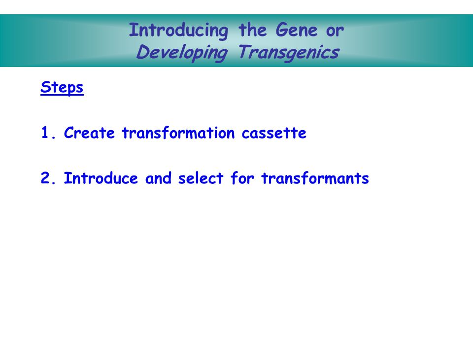 Some of the proteins that are being produced by transgenic crop plants: –human growth hormone –humanized antibodies against such infectious agents as HIV respiratory syncytial virus (RSV) herpes simplex virus, HSV 9.Edible Vaccines Works like any vaccine A transgenic plant with a pathogen protein gene is developed Potato, banana, and tomato are targets Humans eat the plant The body produces antibodies against pathogen protein Humans are immunized against the pathogen Examples: Diarrhea, Hepatitis B, Measles Some Achievements Cont…
