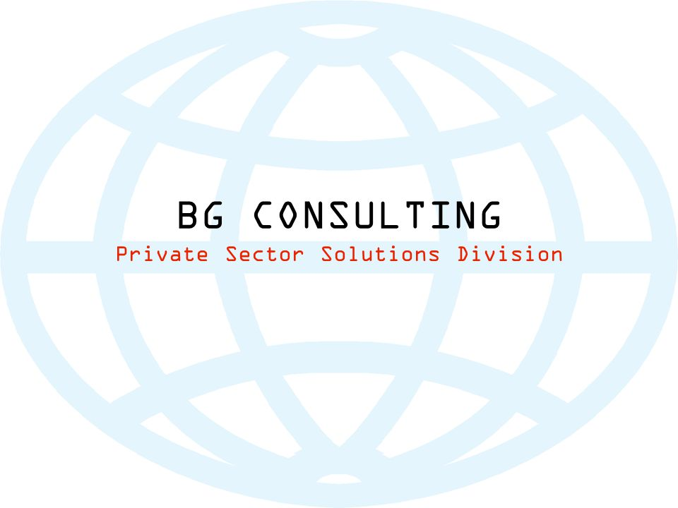 BG CONSULTING Private Sector Solutions Division