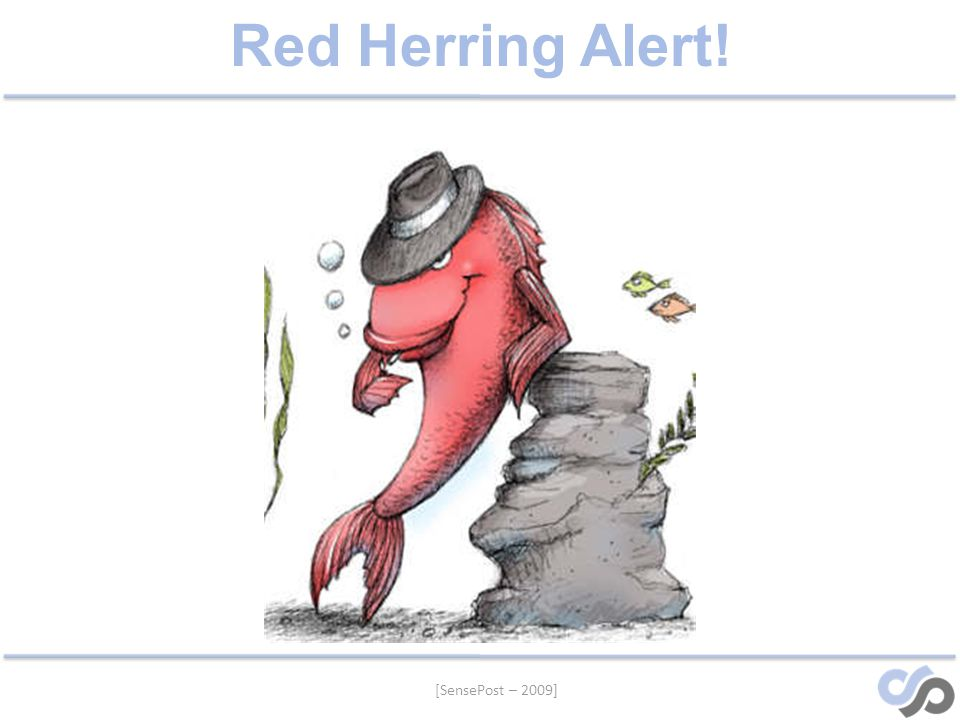 [SensePost – 2009] Red Herring Alert!