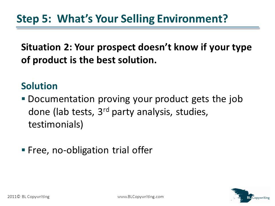 2011© BL Copywritingwww.BLCopywriting.com Step 5: What's Your Selling Environment.
