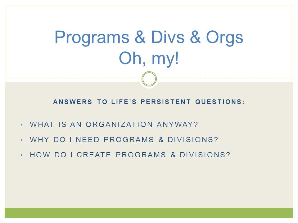 ANSWERS TO LIFE'S PERSISTENT QUESTIONS: WHAT IS AN ORGANIZATION ANYWAY.