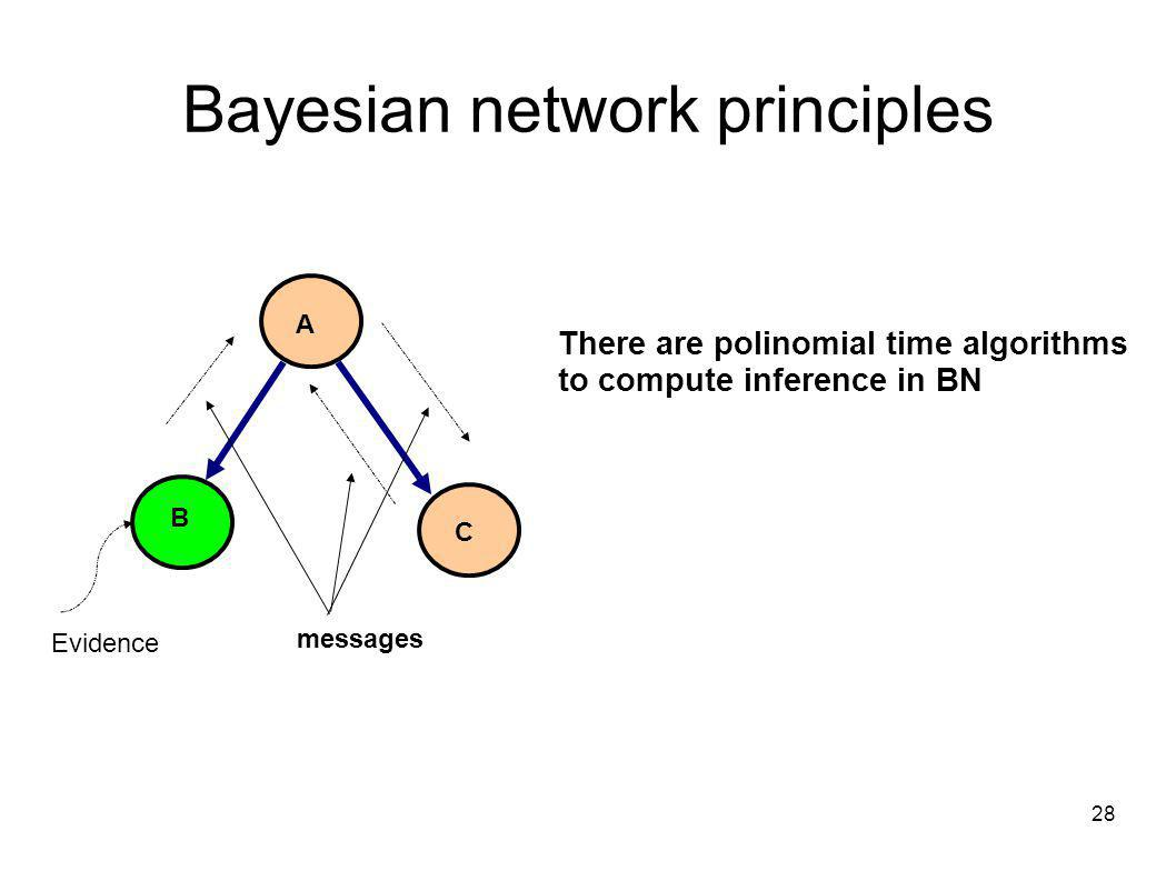 28 Bayesian network principles A B C There are polinomial time algorithms to compute inference in BN Evidence messages