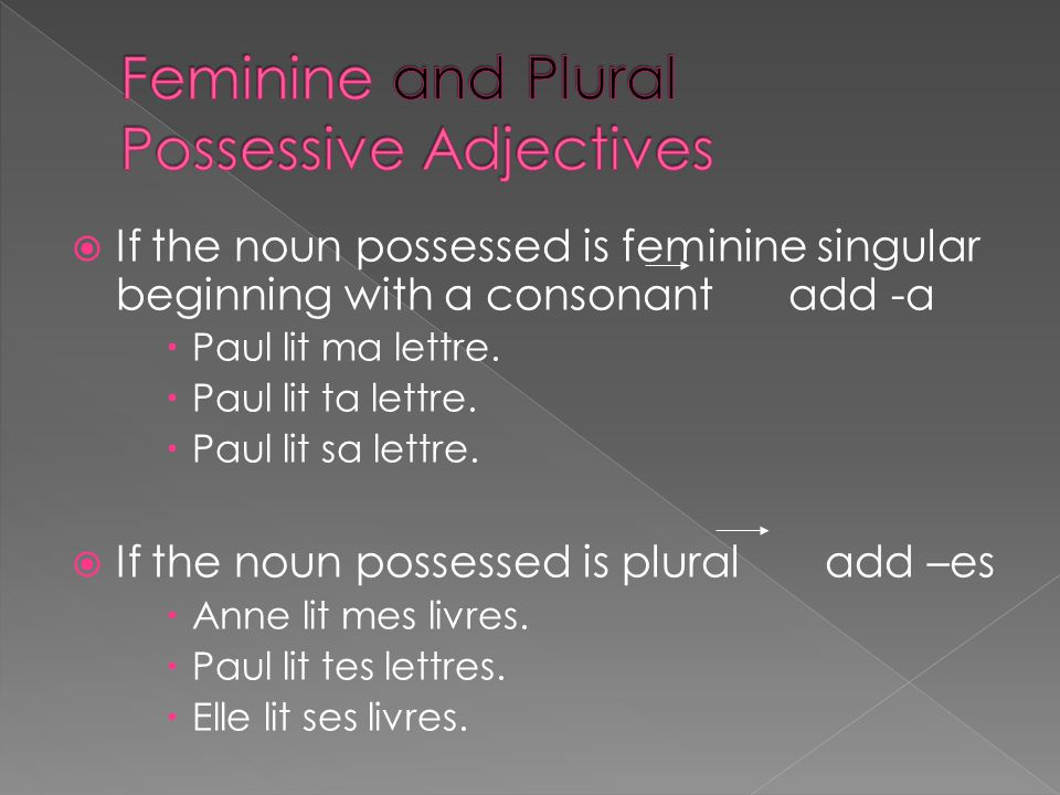  If the noun possessed is feminine singular beginning with a consonant add -a  Paul lit ma lettre.