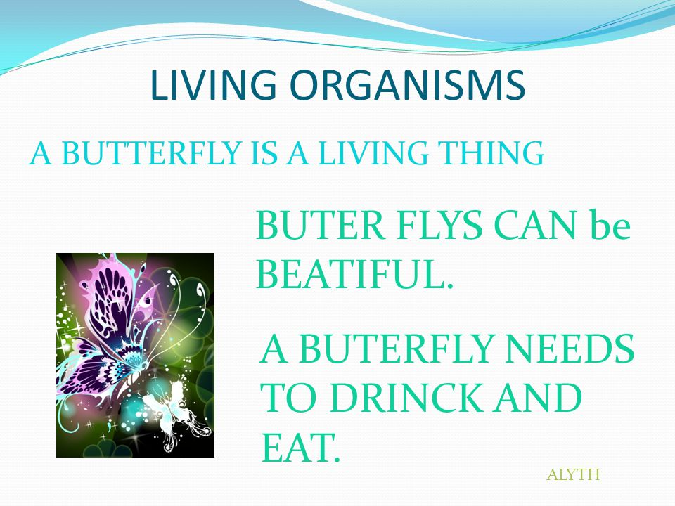 LIVING ORGANISMS A BUTTERFLY IS A LIVING THING BUTER FLYS CAN be BEATIFUL.
