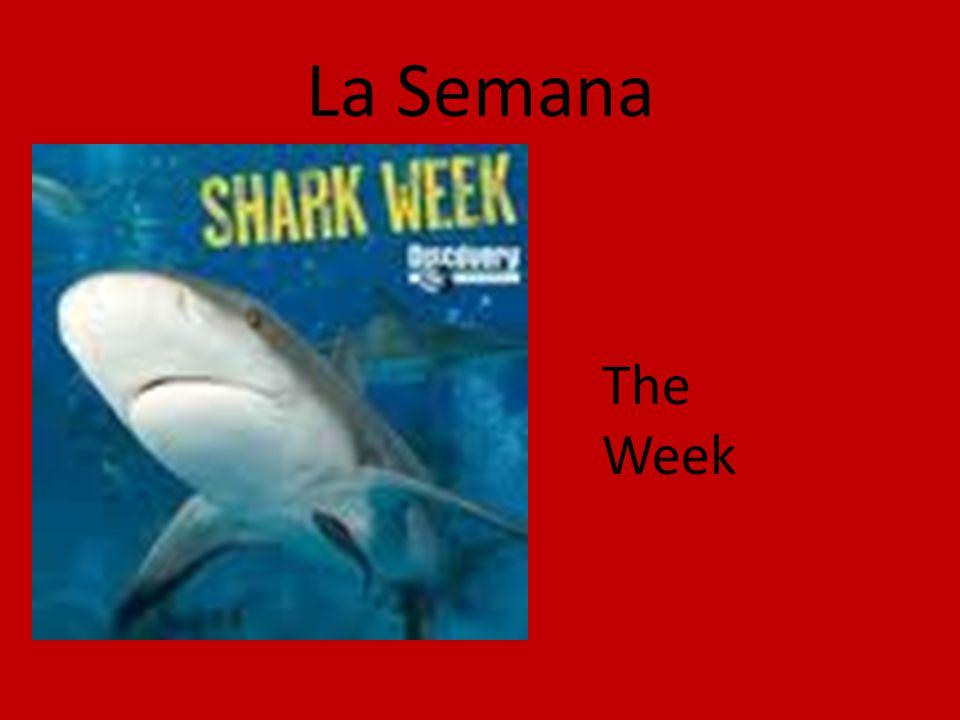 La Semana The Week