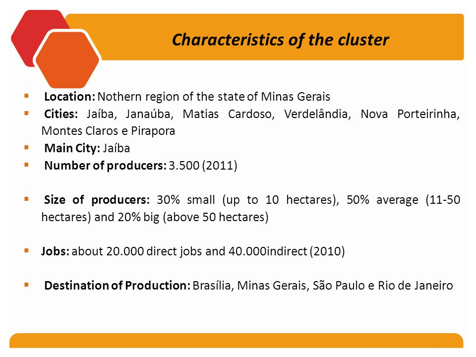 Characteristics of the cluster  Location: Nothern region of the state of Minas Gerais  Cities: Jaíba, Janaúba, Matias Cardoso, Verdelândia, Nova Porteirinha, Montes Claros e Pirapora  Main City: Jaíba  Number of producers: 3.500 (2011)  Size of producers: 30% small (up to 10 hectares), 50% average (11-50 hectares) and 20% big (above 50 hectares)  Jobs: about 20.000 direct jobs and 40.000indirect (2010)  Destination of Production: Brasília, Minas Gerais, São Paulo e Rio de Janeiro