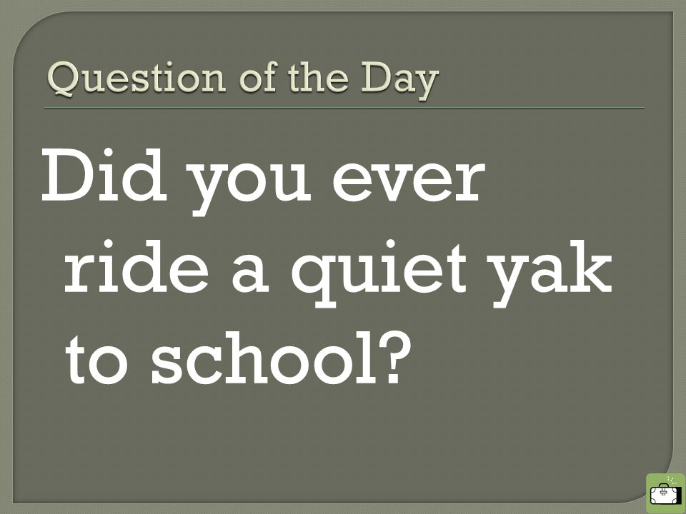 Did you ever ride a quiet yak to school