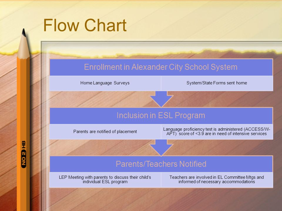 Flow Chart Continued….