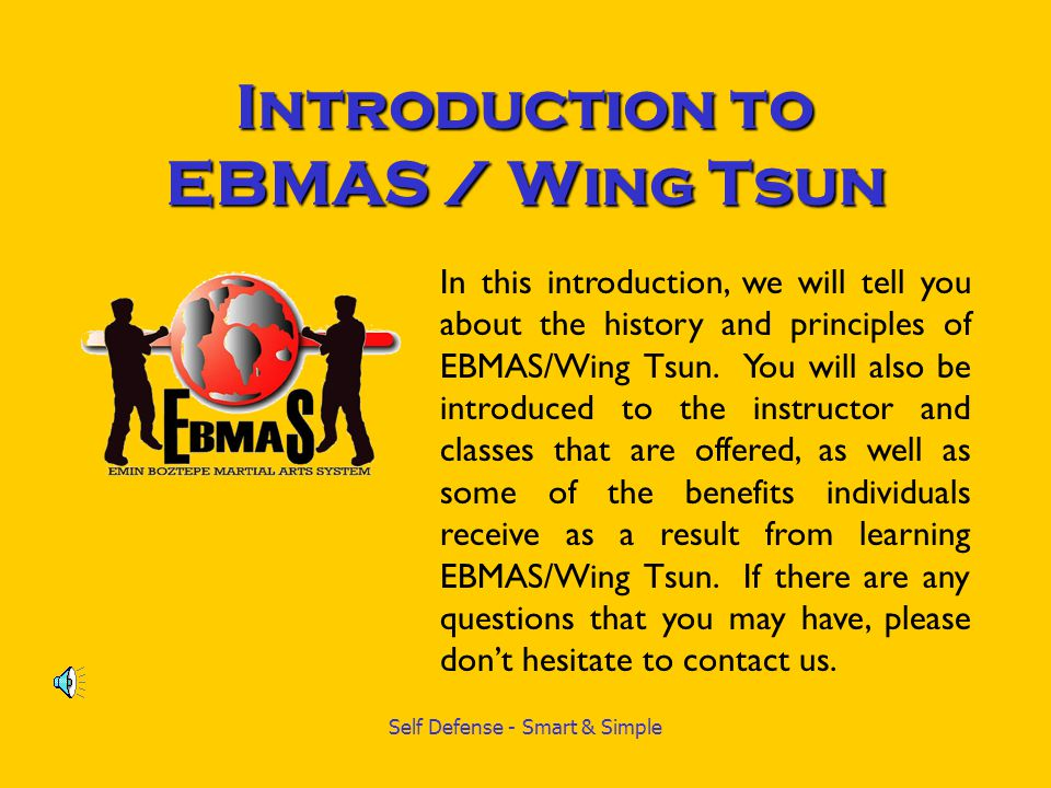 Self Defense - Smart & Simple -EBMAS (Emin Boztepe Martial Arts System) is one of the largest professional martial arts organizations worldwide.