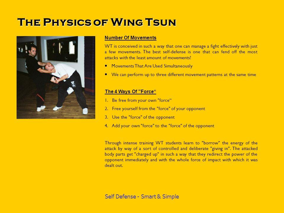 Wing Tsun Seminar in Chicago Seminars with Sifu Emin Boztepe are in great demand around the world.