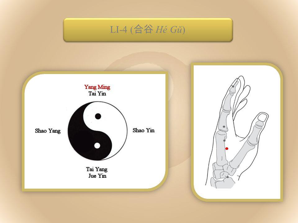 The Defensive Qi ( 衛氣 Wèiqì) LI-4 ( 合谷 Hé Gǔ)