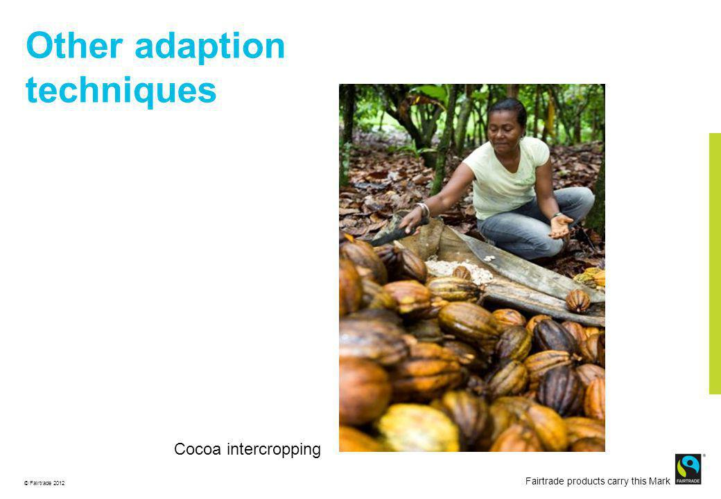 © Fairtrade 2012 Fairtrade products carry this Mark Mitigation ACOPAGRO Co-operative Peru Cocoa pods ready for harvest