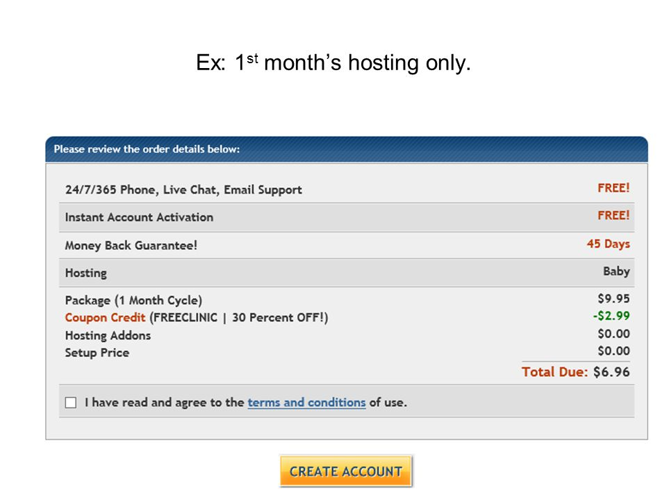 Ex: 1 st month's hosting only.