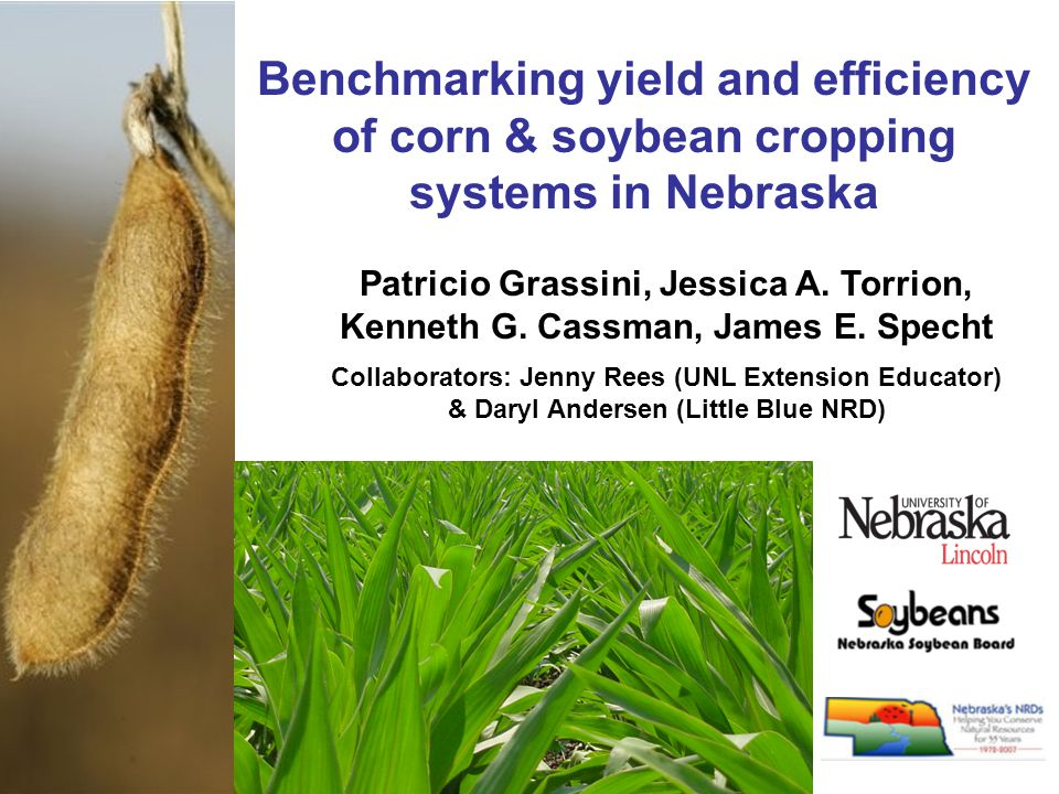Benchmarking yield and efficiency of corn & soybean cropping systems in Nebraska Patricio Grassini, Jessica A.