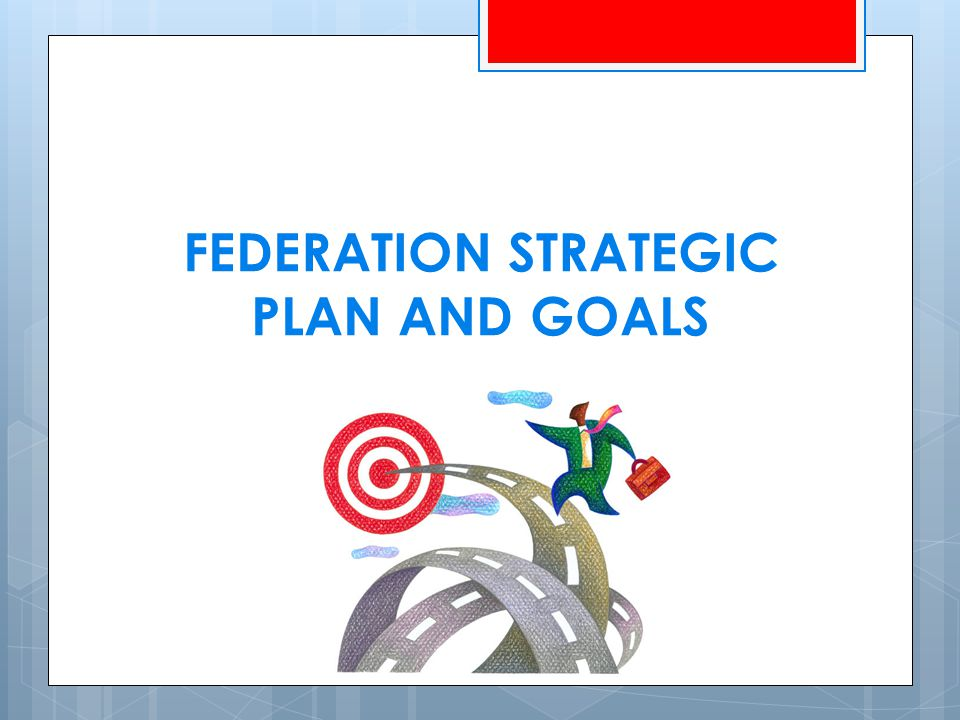 FEDERATION STRATEGIC PLAN AND GOALS