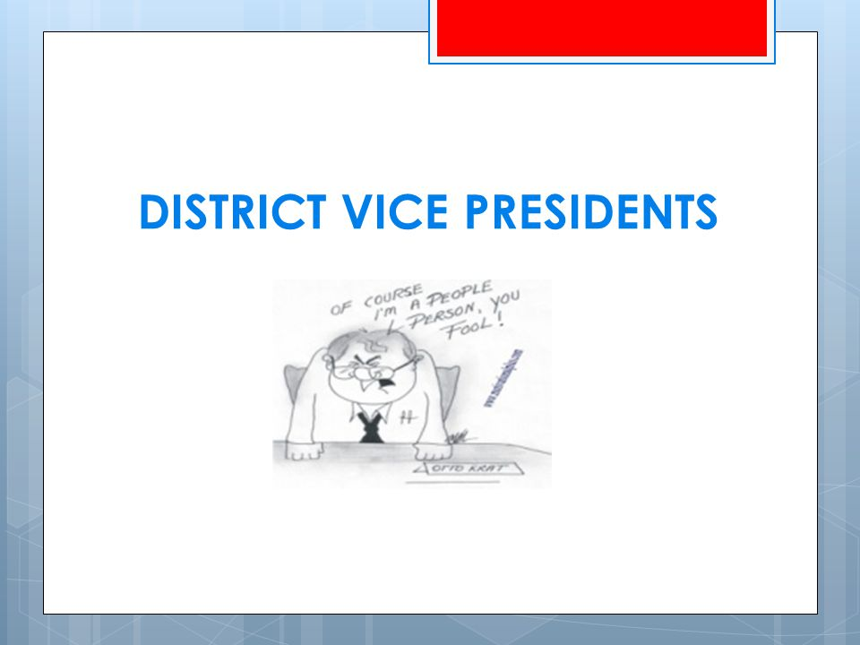 DISTRICT VICE PRESIDENTS