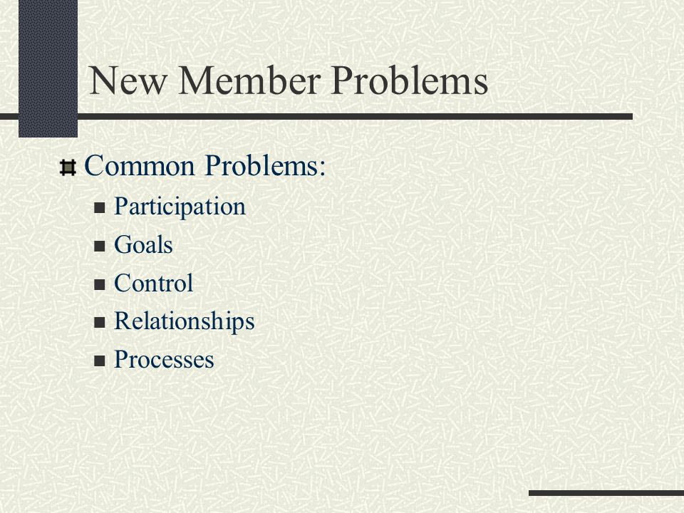 New Member Problems Common Problems: Participation Goals Control Relationships Processes