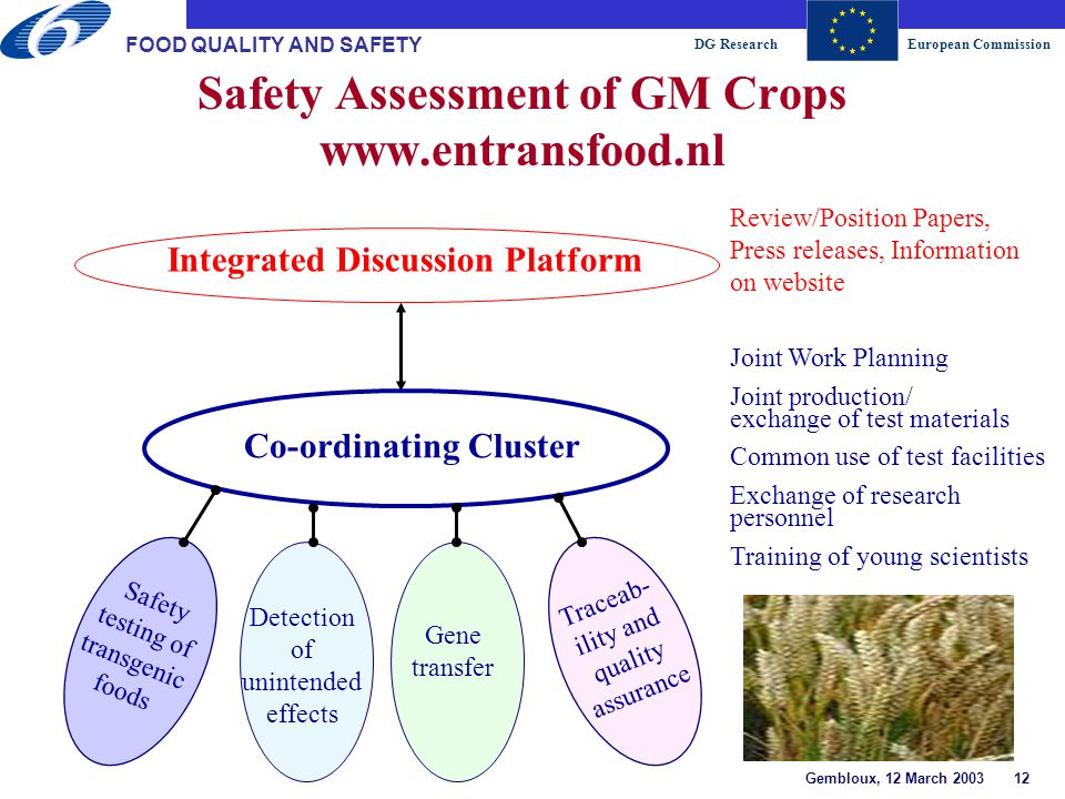 DG ResearchEuropean Commission Gembloux, 12 March 2003 12 FOOD QUALITY AND SAFETY Safety Assessment of GM Crops www.entransfood.nl Integrated Discussion Platform Co-ordinating Cluster Review/Position Papers, Press releases, Information on website Joint Work Planning Joint production/ exchange of test materials Common use of test facilities Exchange of research personnel Training of young scientists Safety testing of transgenic foods Detection of unintended effects Gene transfer Traceab- ility and quality assurance