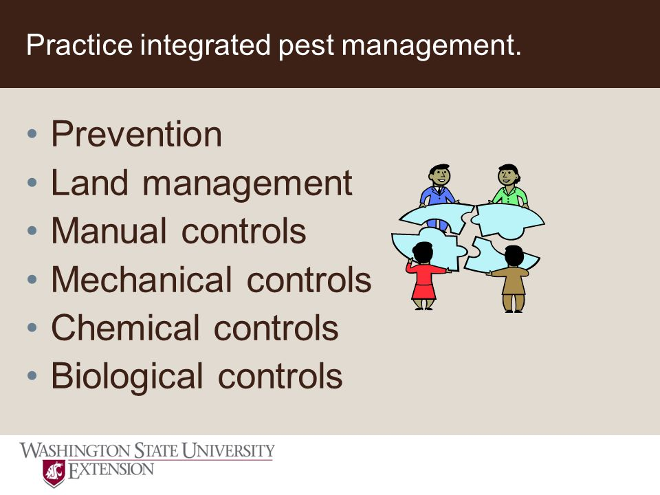 Practice integrated pest management.