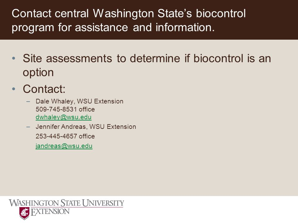 Contact central Washington State's biocontrol program for assistance and information.