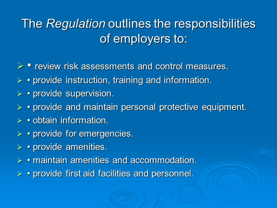 The Regulation Regulation outlines the responsibilities of employers to: review risk assessments and control measures.