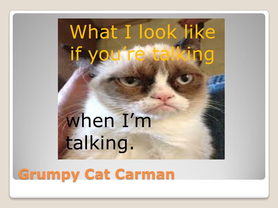 What I look like if you're talking when I'm talking. Grumpy Cat Carman