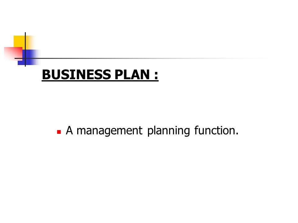 BUSINESS PLAN : A management planning function.