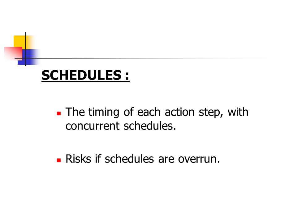 SCHEDULES : The timing of each action step, with concurrent schedules. Risks if schedules are overrun.
