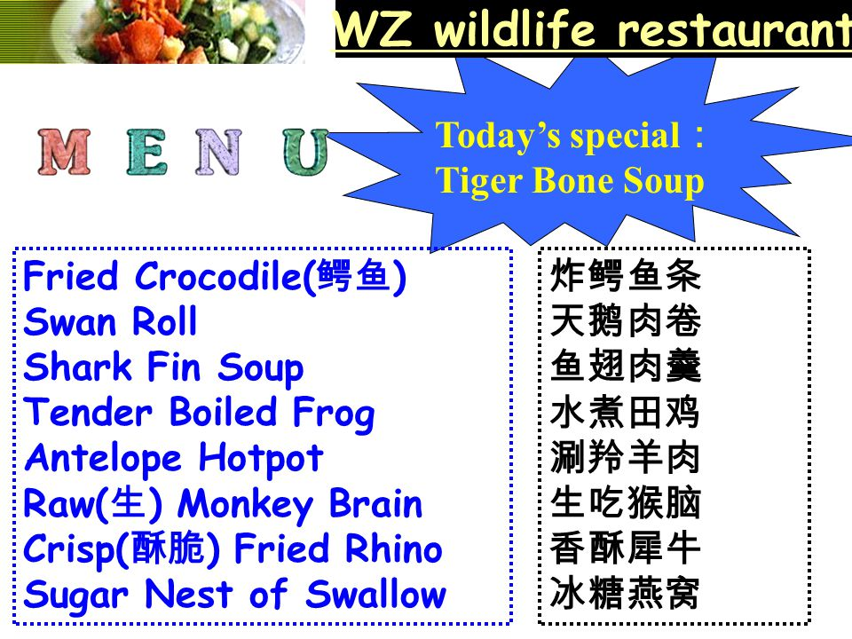 WZ wildlife restaurant Today's special : Tiger Bone Soup Fried Crocodile( 鳄鱼 ) Swan Roll Shark Fin Soup Tender Boiled Frog Antelope Hotpot Raw( 生 ) Mo