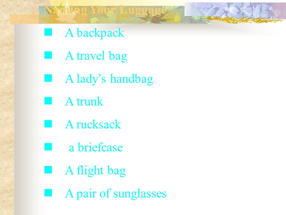 Naming Your Luggage A backpack A travel bag A lady's handbag A trunk A rucksack a briefcase A flight bag A pair of sunglasses
