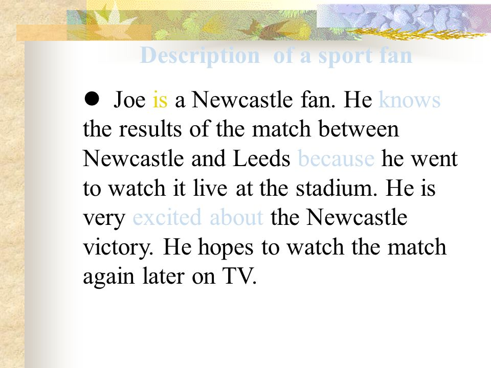 Description of a sport fan Joe is a Newcastle fan.