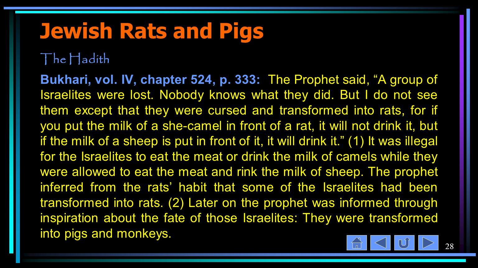 28 Jewish Rats and Pigs The Hadith Bukhari, vol. IV, chapter 524, p.