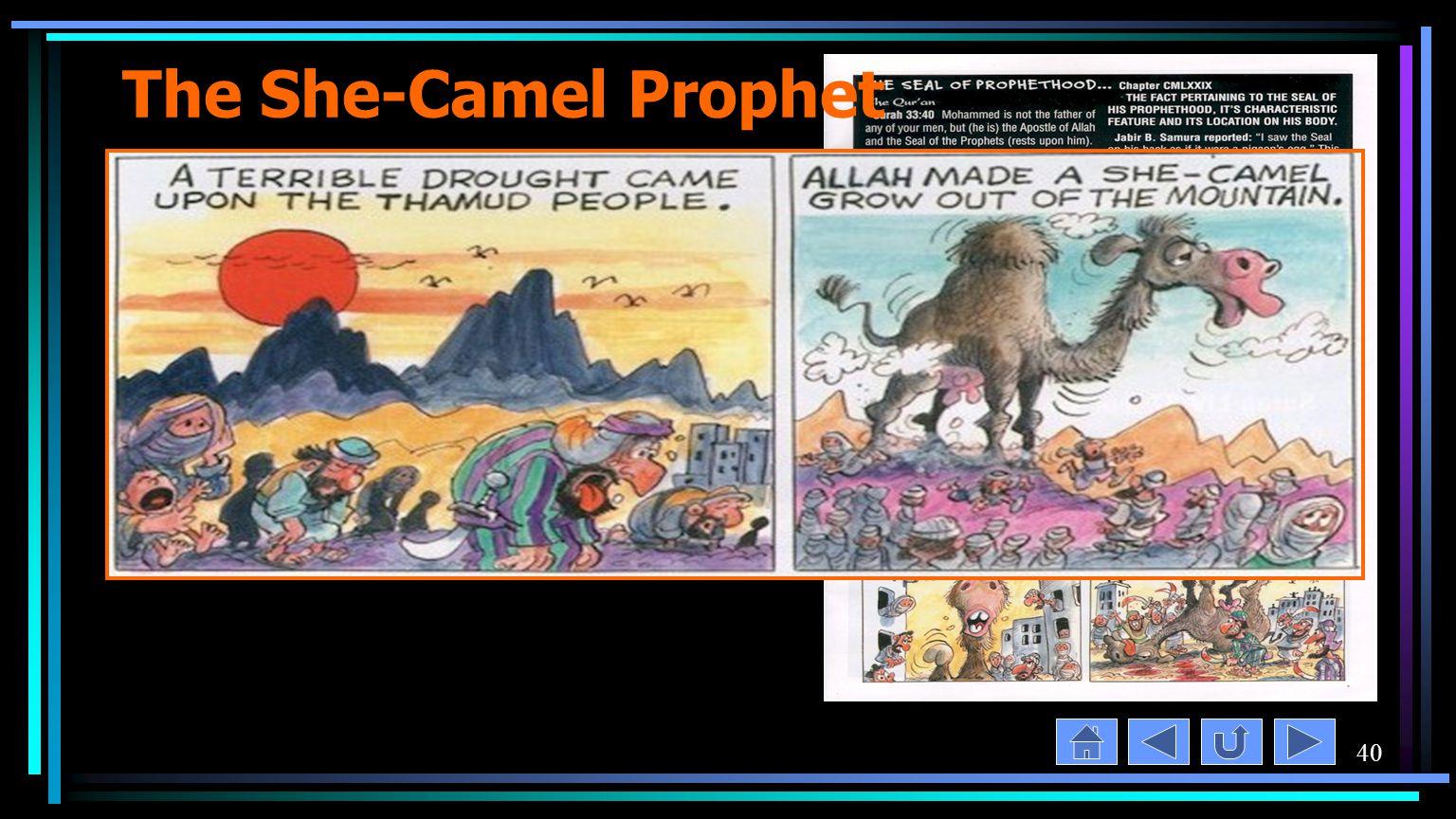 40 The She-Camel Prophet