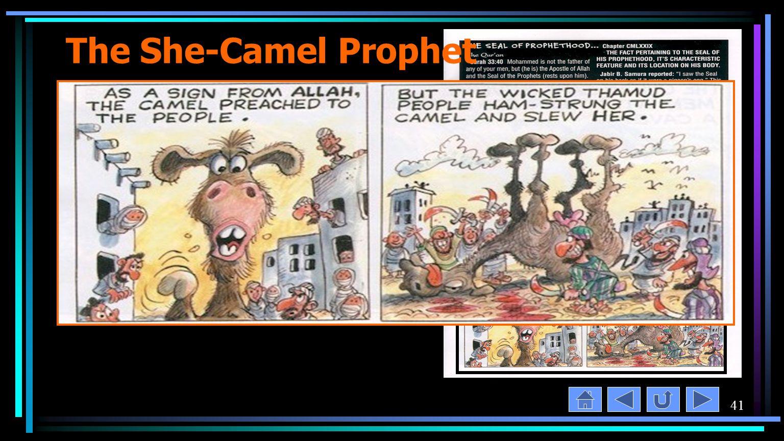41 The She-Camel Prophet