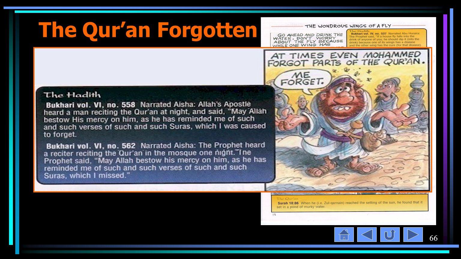 66 The Qur'an Forgotten