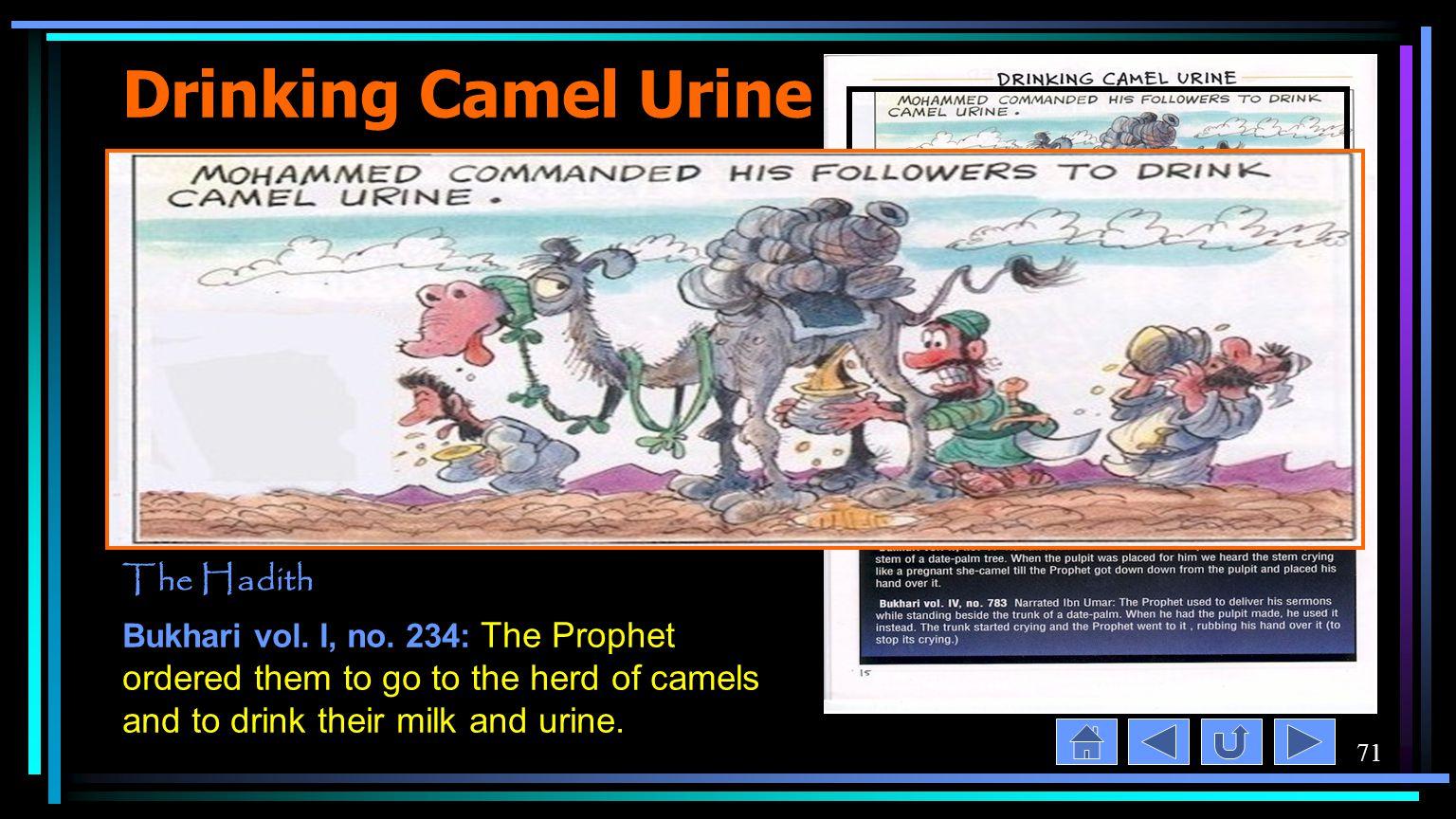 71 Drinking Camel Urine The Hadith Bukhari vol. I, no.