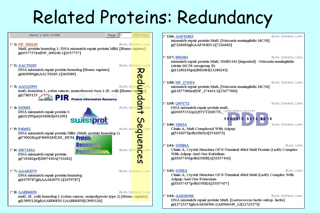 Related Proteins: Redundancy Redundant Sequences