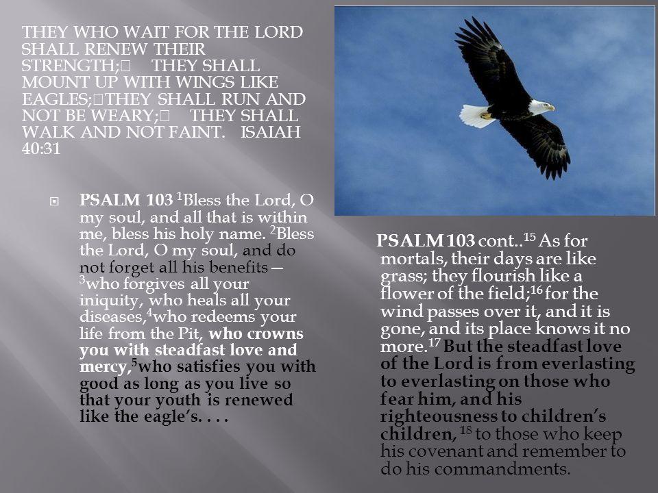 Psalm 92 PSALM 92:12-14 The righteous flourish like the palm tree, and grow like a cedar in Lebanon.