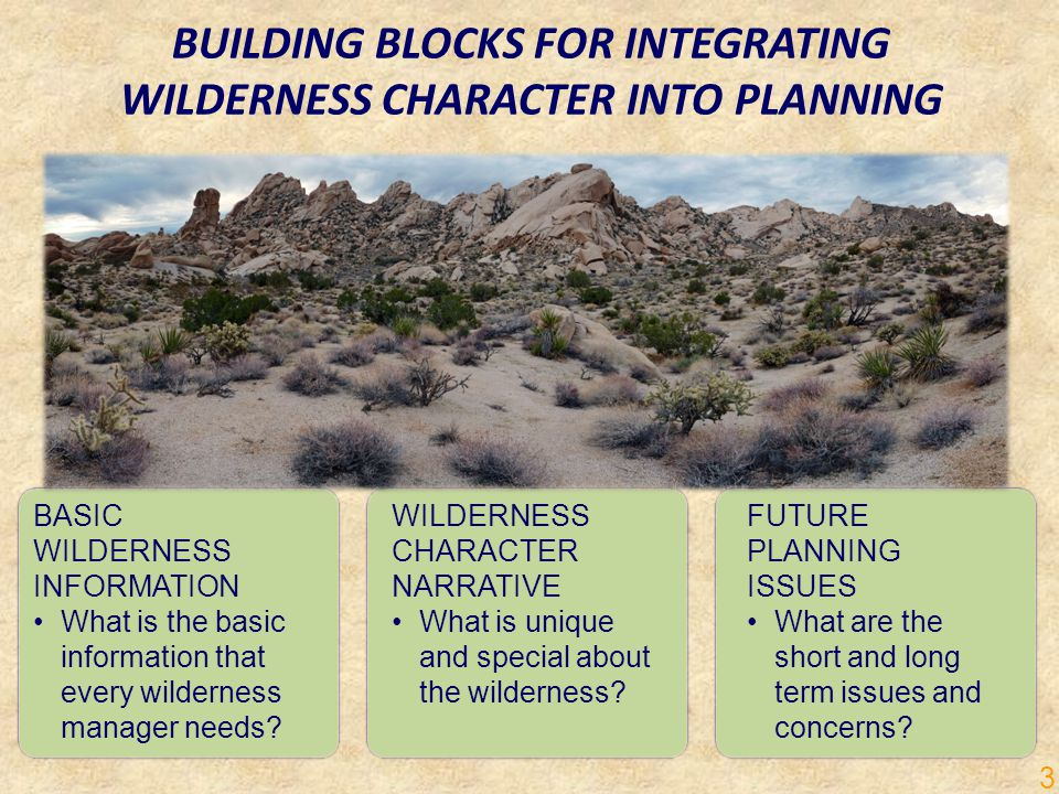 BUILDING BLOCKS FOR INTEGRATING WILDERNESS CHARACTER INTO PLANNING BASIC WILDERNESS INFORMATION What is the basic information that every wilderness manager needs.