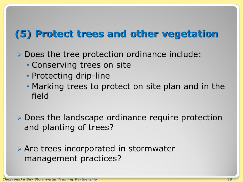 Chesapeake Bay Stormwater Training Partnership38 (5) Protect trees and other vegetation  Does the tree protection ordinance include: Conserving trees on site Protecting drip-line Marking trees to protect on site plan and in the field  Does the landscape ordinance require protection and planting of trees.