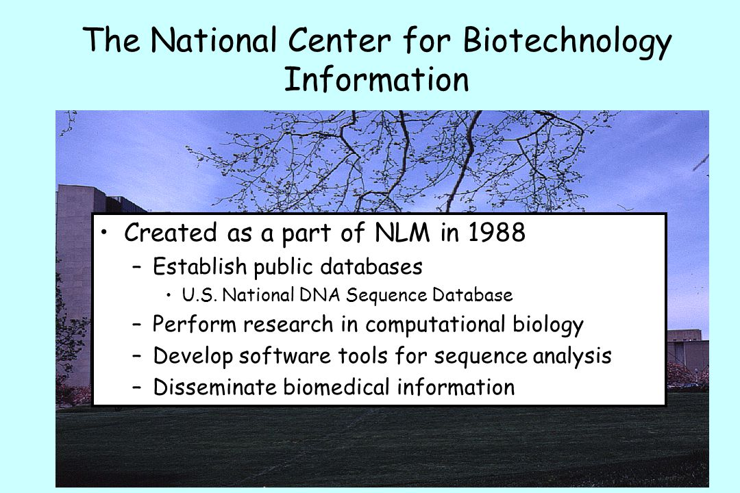 The National Center for Biotechnology Information Created as a part of NLM in 1988 –Establish public databases U.S.