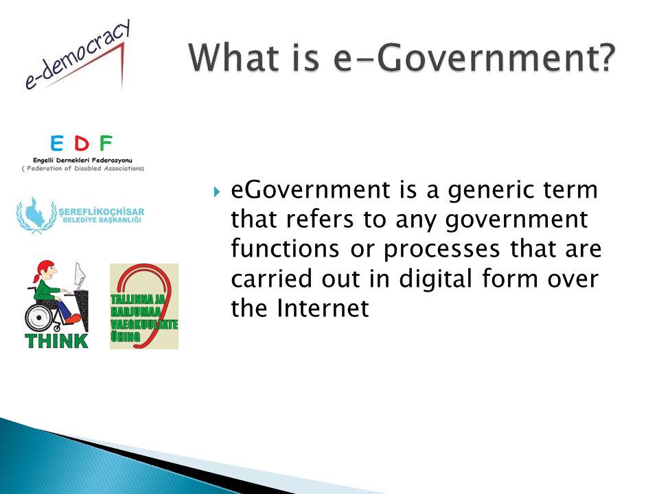  eGovernment is a generic term that refers to any government functions or processes that are carried out in digital form over the Internet