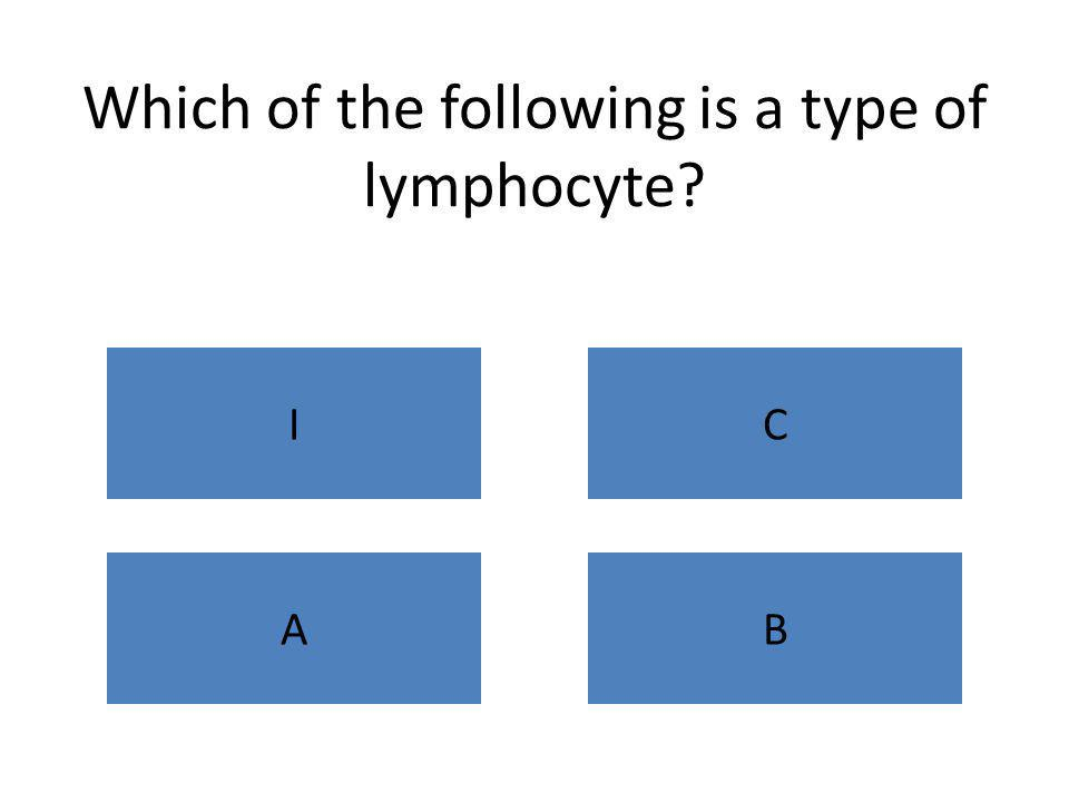 Which of the following is a type of lymphocyte? IC AB