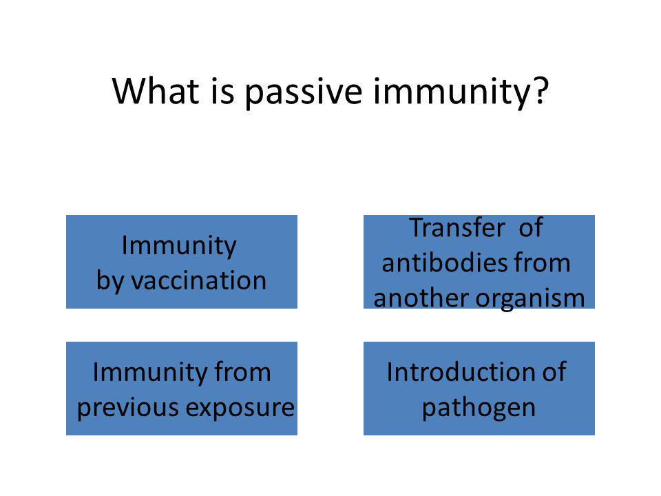 What is passive immunity? Immunity by vaccination Transfer of antibodies from another organism Immunity from previous exposure Introduction of pathoge