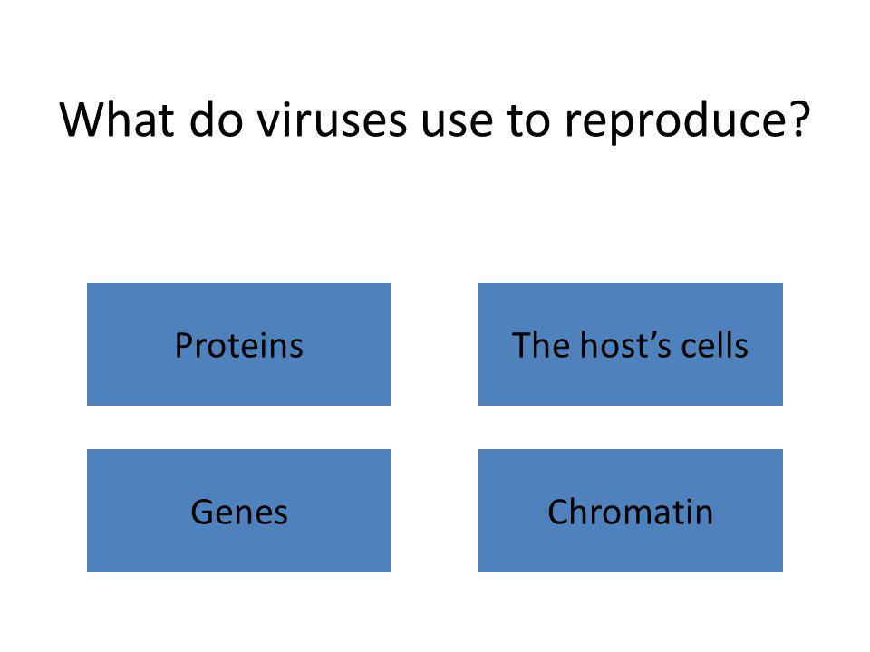 What do viruses use to reproduce? ProteinsThe host's cells GenesChromatin
