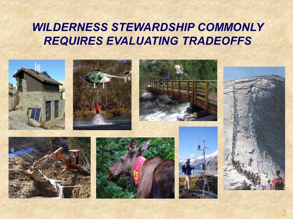 WILDERNESS STEWARDSHIP COMMONLY REQUIRES EVALUATING TRADEOFFS 3